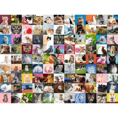 Puzzle Ravensburger-16235 99 Katzen