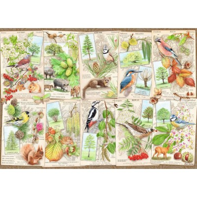 Puzzle Ravensburger-16421 Wondrous Trees