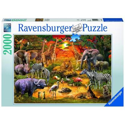 Puzzle Ravensburger-16702 Versammlung am Wasserloch