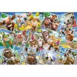 Puzzle  Schmidt-Spiele-56294 Tierische Selfies