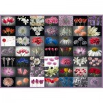 Puzzle  Schmidt-Spiele-58297 Blumengruß