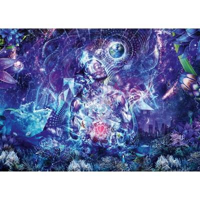 Puzzle  Schmidt-Spiele-58335 Transzendenz
