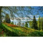 Puzzle  Schmidt-Spiele-58967 Frühlingsallee zur Tulpenblüte - Insel Mainau