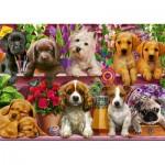 Puzzle  Schmidt-Spiele-58973 Hunde im Regal