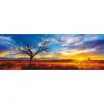Puzzle  Schmidt-Spiele-59287 Mark Gray: Australien, Oak Wüste im Sonnenuntergang