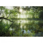 Puzzle  Schmidt-Spiele-59670 Stefan Hefele - Home Jungle