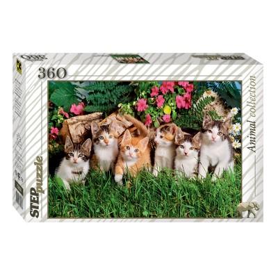 Puzzle  Step-Puzzle-73058 Kätzchen