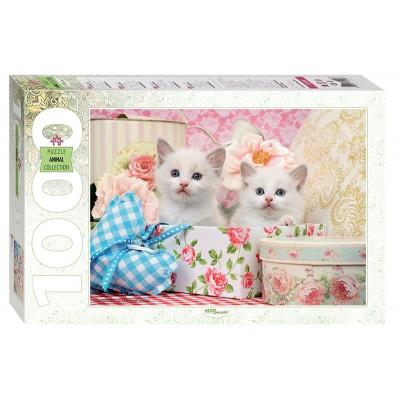 Puzzle  Step-Puzzle-79100 Kätzchen