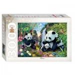 Puzzle  Step-Puzzle-85011 Pandas