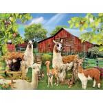 Puzzle  Sunsout-35032 Lori Schory - Six Llamas