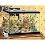 Puzzle  Sunsout-35049 XXL Teile - Fish Tank