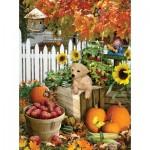 Puzzle  Sunsout-35140 XXL Teile - Lori Schory - Harvest Puppy