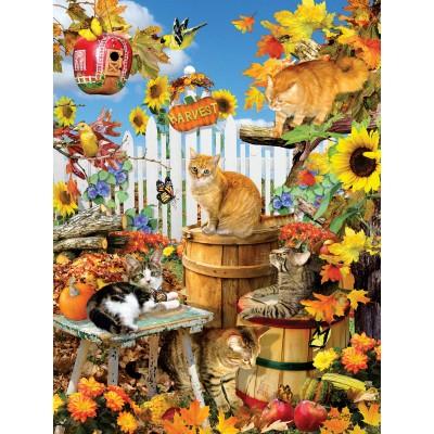 Puzzle Sunsout-35143 XXL Teile - Lori Schory - Harvest Kittens