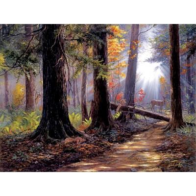 Puzzle  Sunsout-40610 Jack Paluh - Peaceful Path