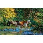 Puzzle  Sunsout-44855 Chris Cummings - Bear Creek Crossing