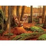 Puzzle  Sunsout-50133 Where Sleeping Deer Lie