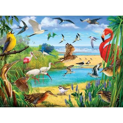 Puzzle  Sunsout-70028 R. Christopher Vest - Florida Birds