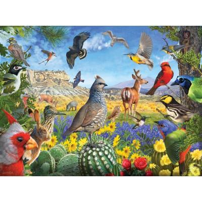Puzzle  Sunsout-70939 R. Christopher Vest - Texas Birds