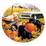 Puzzle  Sunsout-73434 Pumpkin Patch