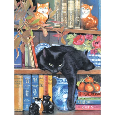 Puzzle  Sunsout-CL59367 Chrissy Snelling - On the Shelf