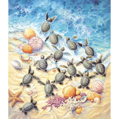 Puzzle  Sunsout-SV45501 Sherry Vintson - Green Turtle Hatchlings