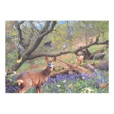 Puzzle  The-House-of-Puzzles-0540 Bluebell Wood