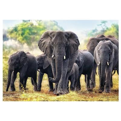 Puzzle Trefl-10442 Afrikanische Elefanten