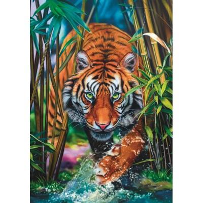 Puzzle Trefl-10528 Tiger