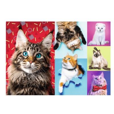 Puzzle Trefl-10591 Happy Cats