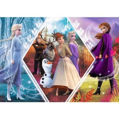 Puzzle  Trefl-13249 Frozen II