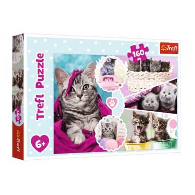 Puzzle  Trefl-15371 Kätzchen