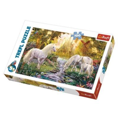 Puzzle Trefl-16349 Secret garden