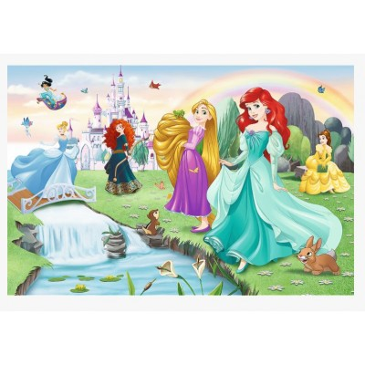 Puzzle  Trefl-17361 Meet the Princesses