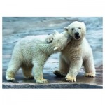 Puzzle  Trefl-37270 Eisbären