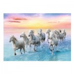 Puzzle  Trefl-37289 Galloping White Horses