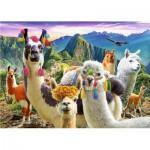 Puzzle  Trefl-37383 Lamas in den Bergen