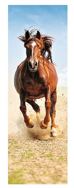 Puzzle  Trefl-75004 Pferd