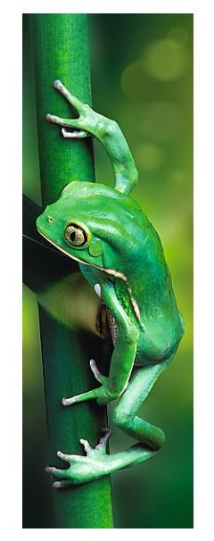 Puzzle Trefl-75007 Little Frog