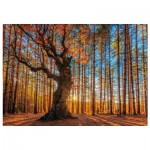 Wentworth-640101 Holzpuzzle - The King of the Forest
